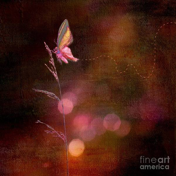 Aimelle Photograph - Imagine ... Believe It - 10bt01 by Variance Collections