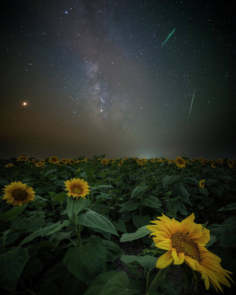 Wall Art - Photograph - Imagine  by Aaron J Groen