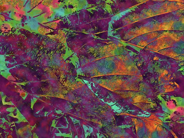 Digital Art - Imagined Beauty 5 by Lynda Lehmann