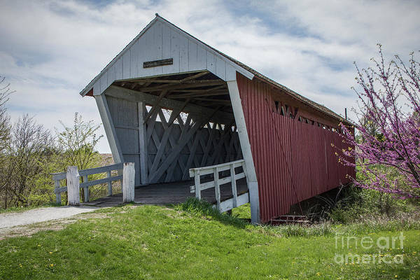 Photograph - Imes Covered Bridge 2 by Teresa Wilson