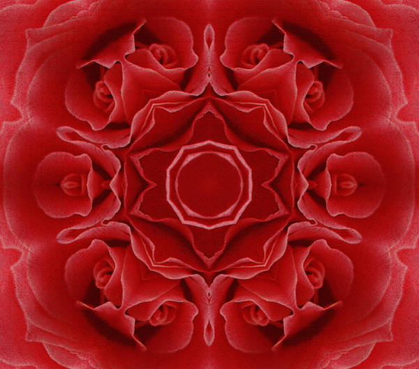 Imperial Red Rose Mandala Art Print