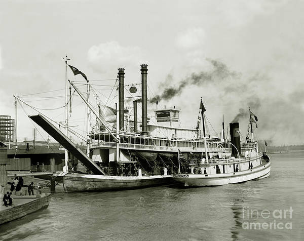 Steam Boat Photograph - Imperial Steamboat New Orleans by Jon Neidert