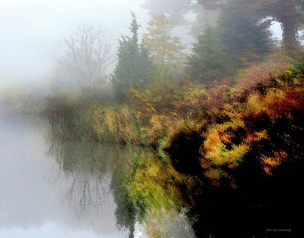 Photograph - Impression On A Lake by Coleman Mattingly