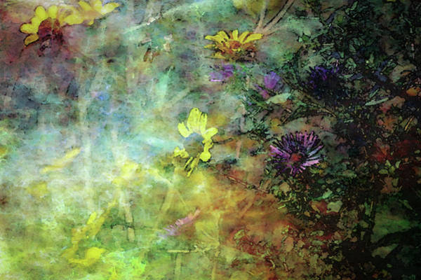 Photograph - Impressionist Contrasting Wildflowers 3220 Idp_2 by Steven Ward