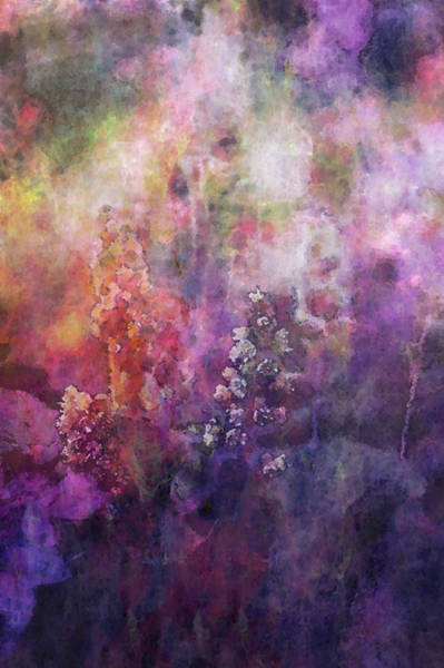 Photograph - Impressionist Insignificant Beauty 3601 Idp_2 by Steven Ward