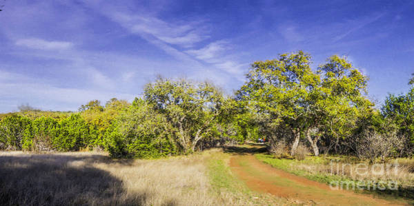 Photograph - Impressionist Painting Panorama Of A Texas Hill Country Landscape At Pedernales Falls State Park  by Silvio Ligutti
