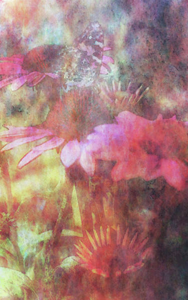 Photograph - Impressionist Queen Of The Coneflowers 3754 Idp_2 by Steven Ward