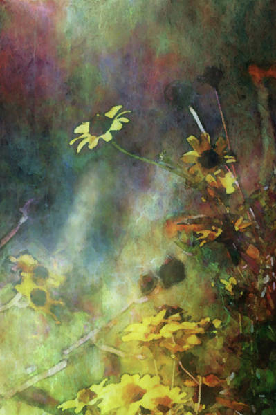 Photograph - Impressionist Yellow Wildflowers 3231 Idp_2 by Steven Ward
