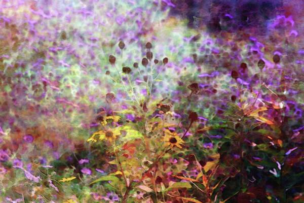 Photograph - Impressionistic Garden 4463 Ldp_2 by Steven Ward