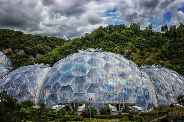 Glasshouse Photograph - In A Bubble by Martin Newman