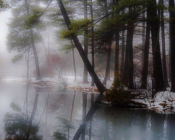 Photograph - In A Fog by Kendall McKernon