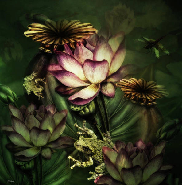 Lotus Mixed Media - In A Frogs World 02 by G Berry