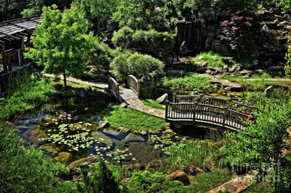 Wall Art - Photograph - In A Midwest Japanese Garden by Mary Machare