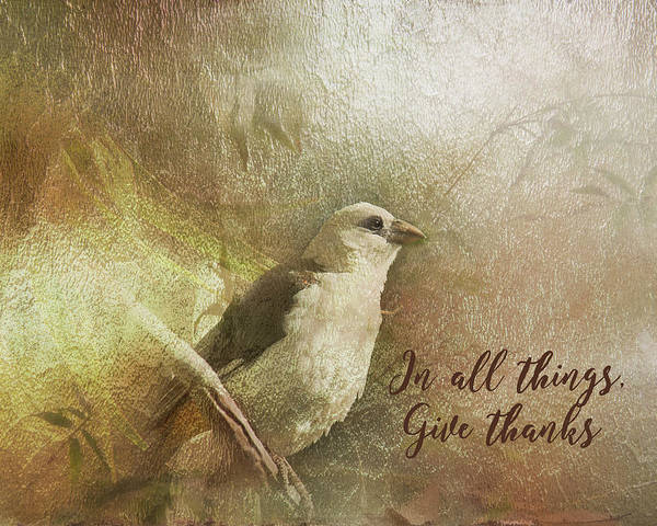 Digital Art - In All Things Give Thanks by Ramona Murdock