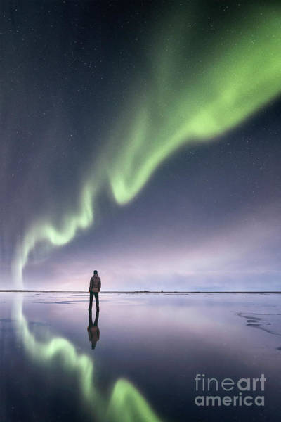 Northern Photograph - In Awe by Evelina Kremsdorf