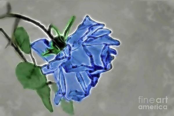Photograph - In Blue by Diana Mary Sharpton