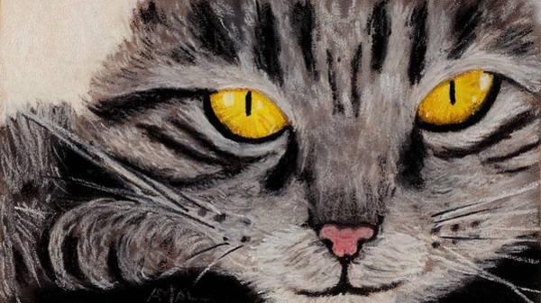 Painting - In Cat's Eyes by Anastasiya Malakhova
