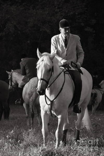 Photograph - In Charge Of The Hounds In Black And White by Angela Rath