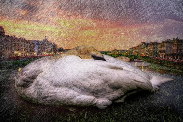 Photograph - In Darkness Sleeping by Debra and Dave Vanderlaan