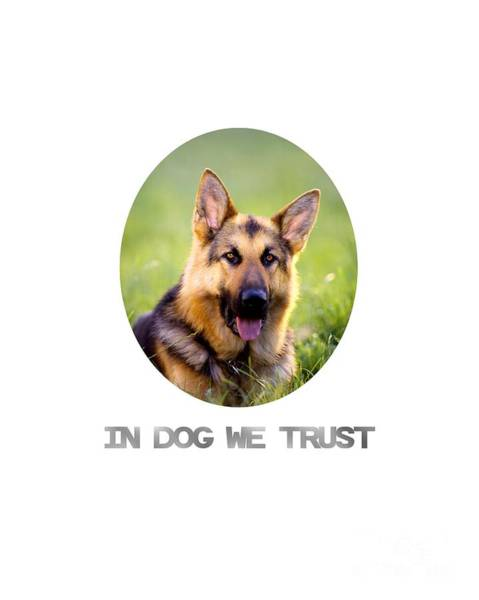 Photograph - In Dog We Trust by Edmund Nagele