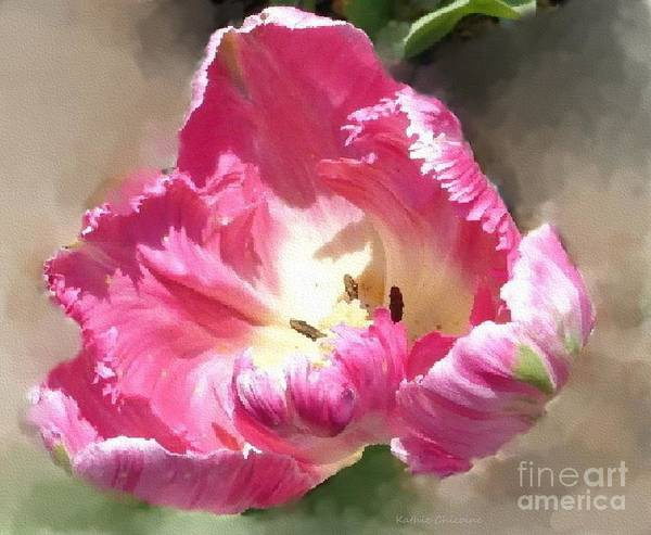 Photograph - In Full Bloom by Kathie Chicoine