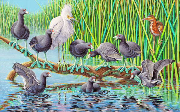 Water Foul Painting - in Kahoots with Coots by Tish Wynne