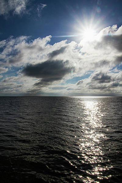 Photograph - In Key West The Sun Is A Star by Bob Slitzan