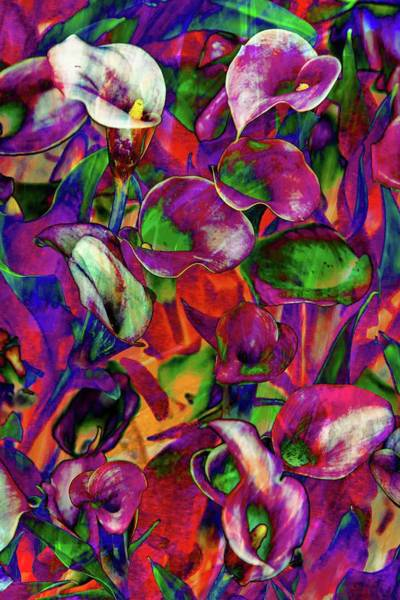 Calla Lilies Photograph - In Living Color by Az Jackson