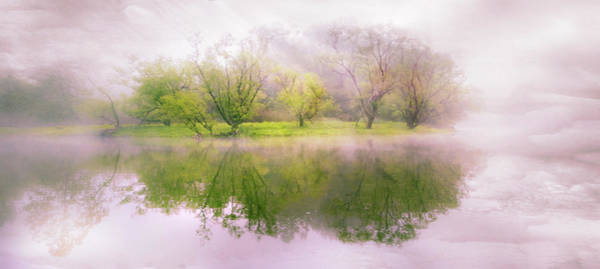 Photograph - In The Clouds by Debra and Dave Vanderlaan