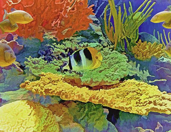 Photograph - In The Coral Garden 10 by Lynda Lehmann