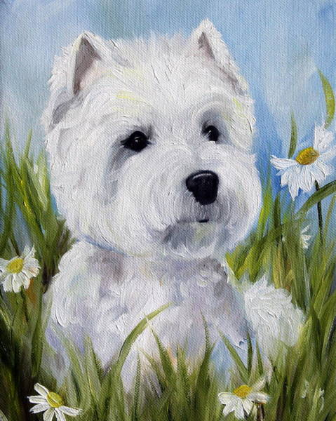 West Highland Painting - In The Daisies by Mary Sparrow