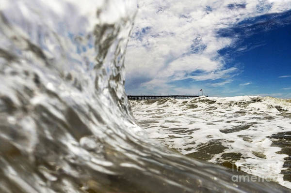 Wavy Wall Art - Photograph - In The Drink by Dan Holm