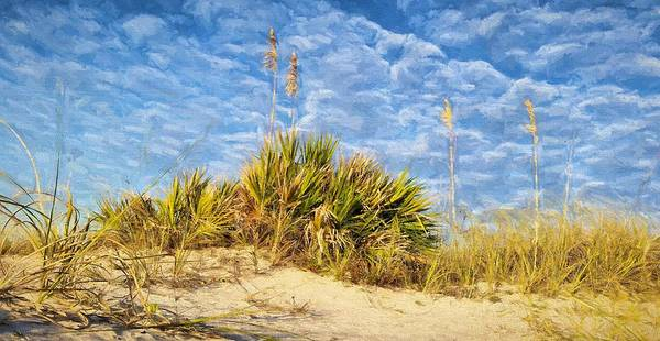 Grayton Beach Photograph - In The Dunes Of South Walton by JC Findley