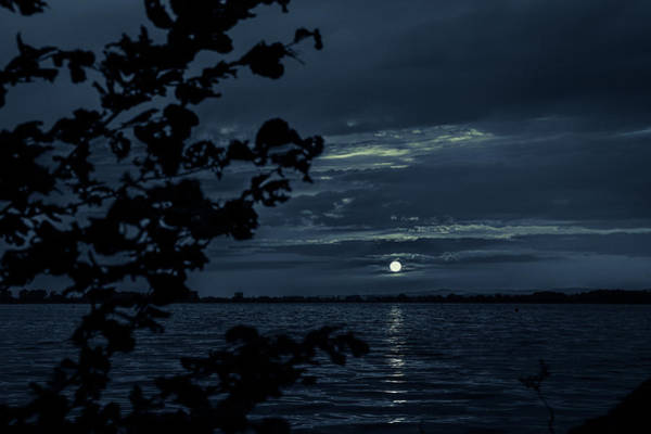 Photograph - In The Evening At The Lake by Andreas Levi