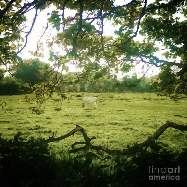 Farm Landscape Mixed Media - In The Field by Abbie Shores