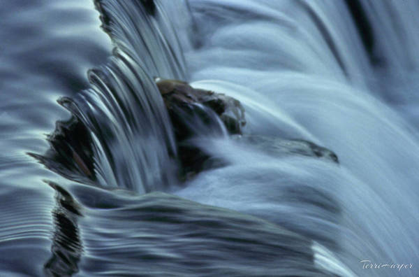 Photograph - In The Flow by Terri Harper