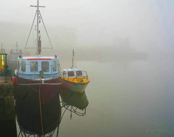 Photograph - In The Fog by Coleman Mattingly