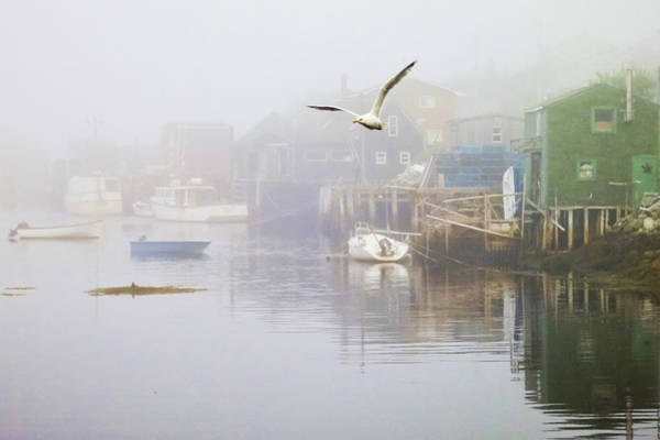 Photograph - In The Fog by Tatiana Travelways
