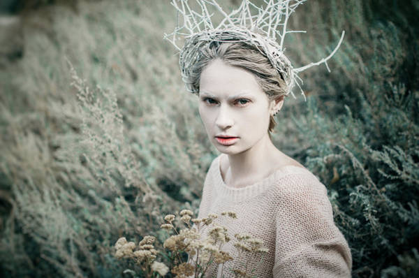 Photograph - In The Grass. Prickle Tenderness by Inna Mosina