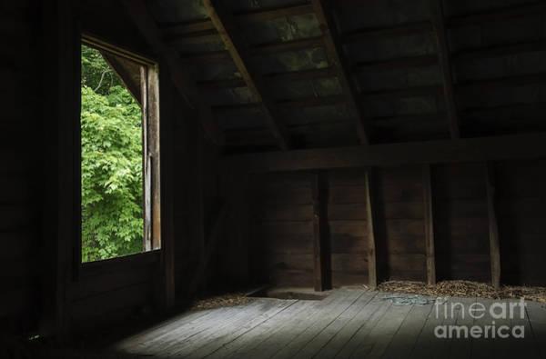 Photograph - In The Hayloft by Debra Fedchin