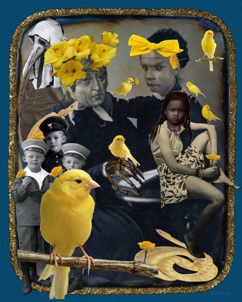 Digital Art - In The House Of The Canaries by Doug Duffey