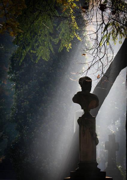 Cementery Photograph - In The Light by Marta Grabska
