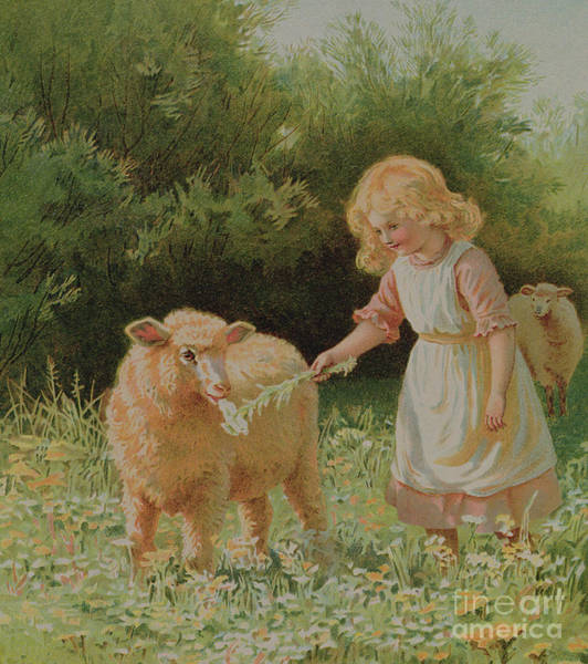 Wall Art - Painting - In The Meadow by English School