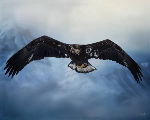 Painting - In The Middle Of Nowhere - Eagle Art by Jordan Blackstone