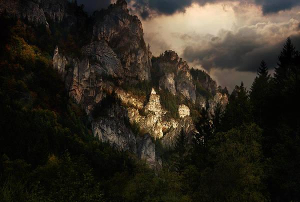 Outdoor Wall Art - Photograph - In The Morning Light by Jaroslaw Blaminsky