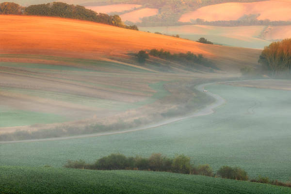 Wall Art - Photograph - In The Morning Mist by Piotr Krol (bax)