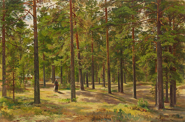 Wall Art - Painting - In The Pine Forest by Ivan Shishkin