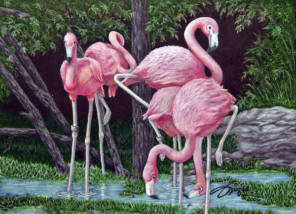 Wall Art - Drawing - In The Pink by Beverly Fuqua