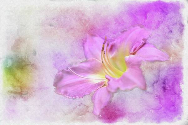Wall Art - Painting - In The Pink by Ches Black