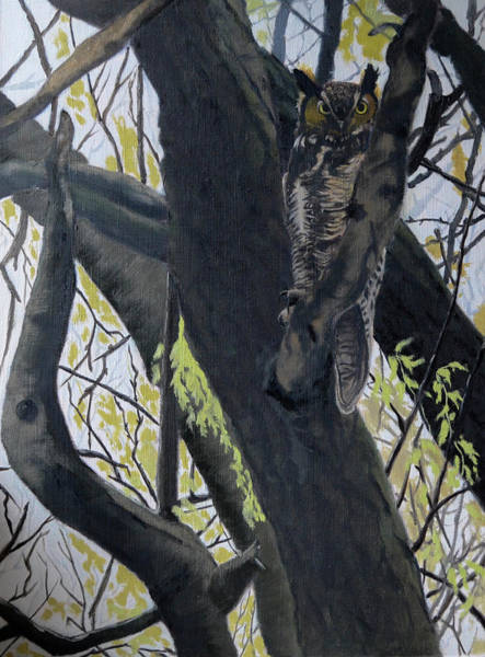 Painting - In The Shadow-ojibway Great Horn Owl by Wade Clark